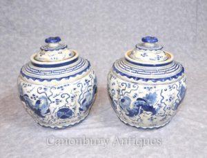 Pair Kangxi ceramica con coperchio Urns Vaso Vaso Porcellana blu e bianca cinese